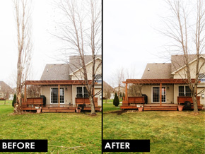 Before and after image of tree removal.