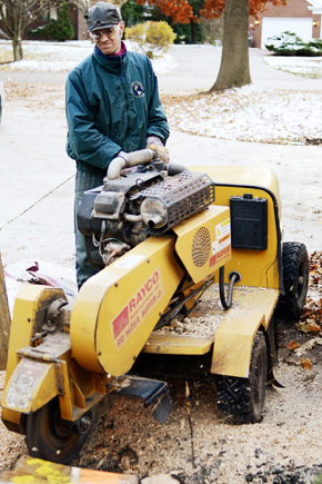 Grinding out a stump.